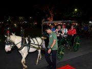 Naik Andong, Presiden Nikmati Suasana Malam di Malioboro