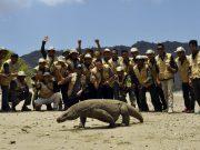 Dengan Guide Berkualitas, Taman Nasional Komodo Siap Menyambut Pertemuan Tahunan IMF-Worldbank