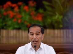 Presiden Minta Semua Pihak Terkait Koordinasi Atasi Karhutla Riau