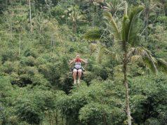 Kunjungan Wisman ke Indonesia Naik 4,86 Persen