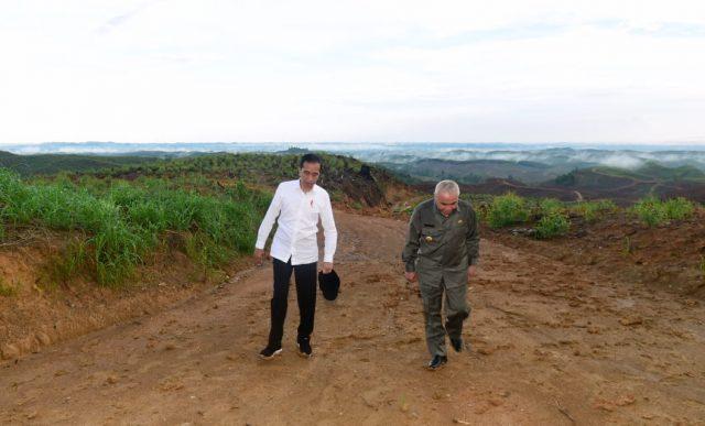 Presiden Tinjau Lokasi Ibu Kota Negara Baru