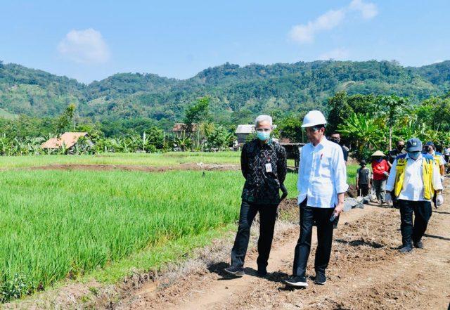 Presiden Jokowi Tinjau Proyek Padat Karya di Batang halo indonesia