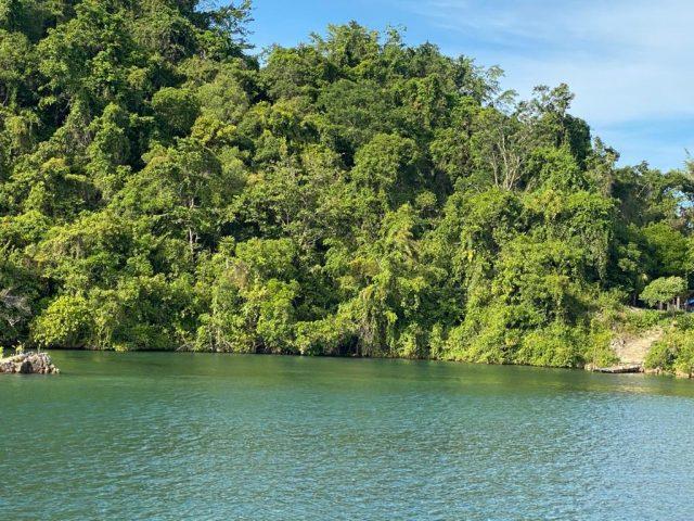 Percepat Pembangunan Kesejahteraan di Papua dan Papua Barat