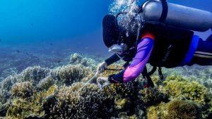 Menparekraf: Pengembangan Infrastruktur KEK Tanjung Lesung Dongkrak Sektor Pariwisata