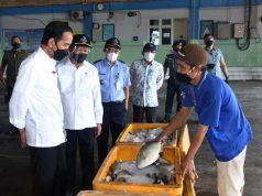 Kunjungi PPDI Brondong, Presiden Jokowi Berdialog dengan para Nelayan